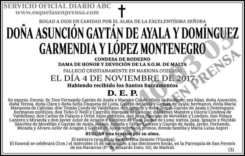 Asunción Gaytán de Ayala y Domínguez Garmendia y López Montenegro